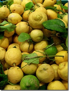 Sorrento Lemons 2 copy